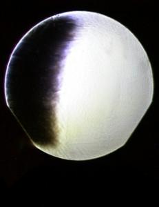 mirrortest02